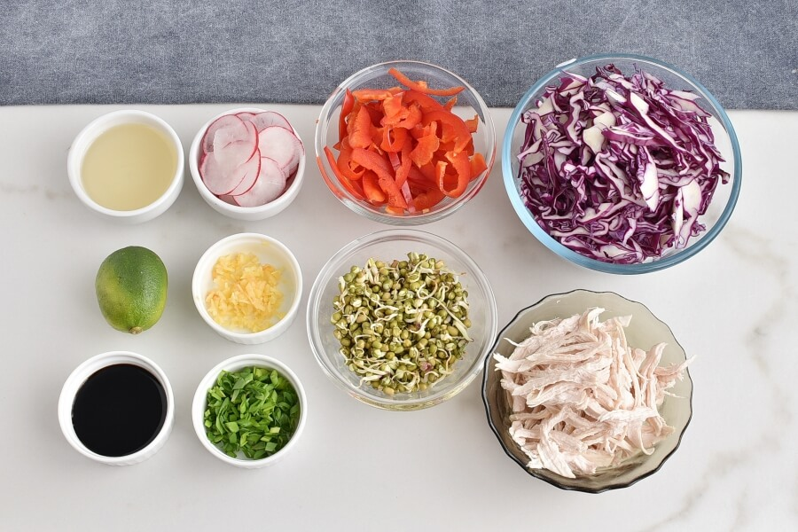Ingridiens for Red Cabbage Salad with Shredded Chicken