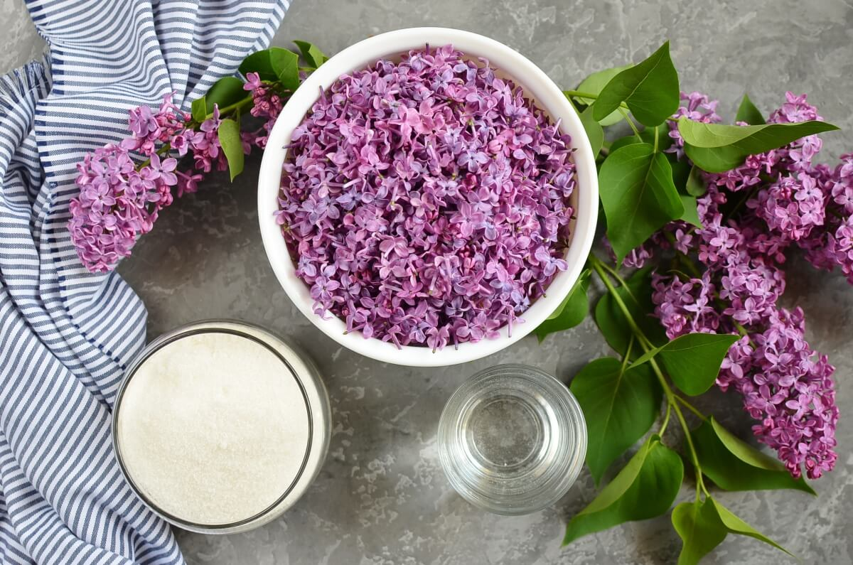 Ingridiens for Lilac Syrup