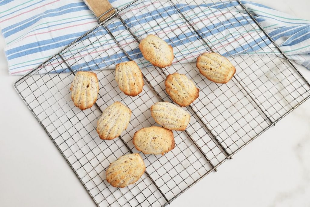 Lime & Hibiscus Madeleines recipe - step 7